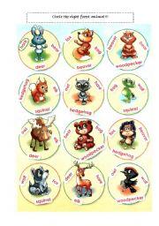 English worksheet: Forest animals - circle