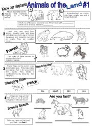 English Worksheet: Animals-Wh questions-Reading