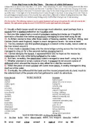 English Worksheets: From: Big Freeze to Big Thaw