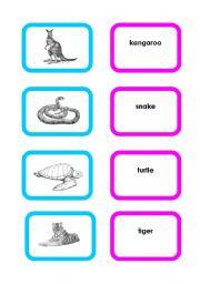 English Worksheets: Animal cards (set 4/4)