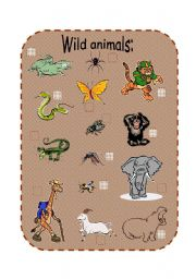 English Worksheets: Wild animals and their habitats