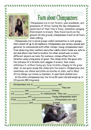 English Worksheets: Chimpanzees