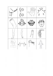 English Worksheet: Bingo game about the parts of the body