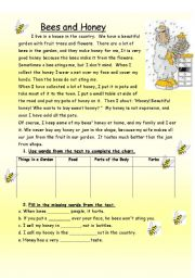 English Worksheet: Bees and Honey