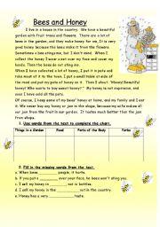 English Worksheet: Bees and Honey