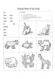 English Worksheet: Animal parts of the body
