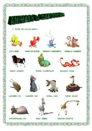 English Worksheets: Animals in Carttons 2. Exercise.