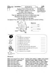 English Worksheets: elephants