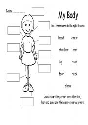 English Worksheet My Body