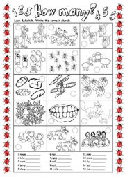 English Worksheets: How many? - plurals