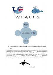English Worksheet: WHALES