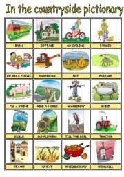 English Worksheet: IN THE COUNTRYSIDE PICTURE DICTIONARY