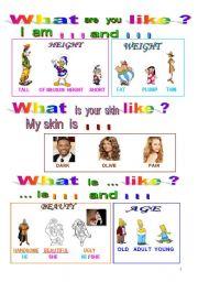 English Worksheets: HUMAN  DESCRIPTIONS