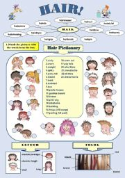 English Worksheets: HAIR! - fun vocabulary set: hair pictionary and hair idioms/2 pages with answer keys