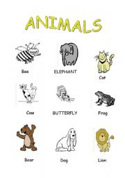 English Worksheets: animals (p.d)