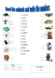 Worksheets Easy Reading Worksheets english teaching worksheets animals reading an easy test animals