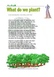 English Worksheet: What do we plant ?