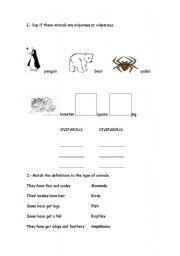 English Worksheets: Oviparous/Viviparous worksheet