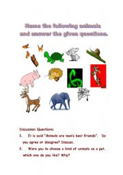 English Worksheets: animals