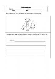 English Worksheets: Orang Utan