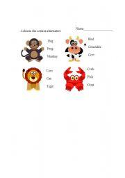 English Worksheets: choose the animals