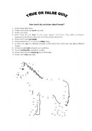 English Worksheets: How much do you know about horses true or false quiz
