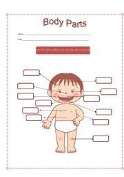 English Worksheet: Coulored Parts of the body