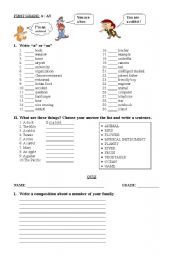 English Worksheet: INDEFINITE ARTICLE A AN