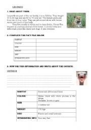 English Worksheets: ANIMALS FACT FILE