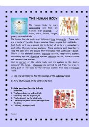 English Worksheets: MIRACULOUS HUMAN BODY! -  (( 2 pages )) - grammar / sentence structure / vocabulary - elementary - editable