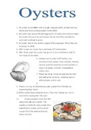 English Worksheets: Oysters