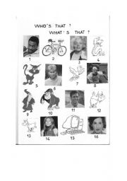 English Worksheets: WHO / WHAT