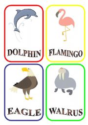 English Worksheets: ANIMAL FLASH-CARDS - PART 9