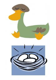 English Worksheet: THE UGLY DUCKLING STORY - FLASHCARDS