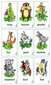 English Worksheets: Animals Cards / flash-cards