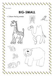 English Worksheet: Adjetives BIG-SMALL