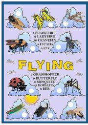 English Worksheets: FLYING