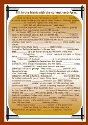 English Worksheet: Verb Tenses revision 1