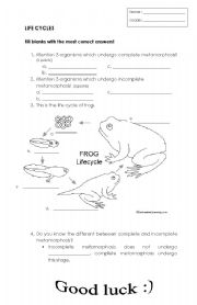 English Worksheet: LIFE CYCLE