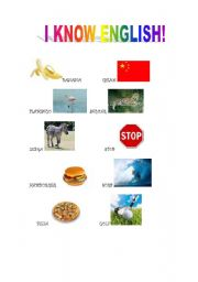 English Worksheets: portuguese english