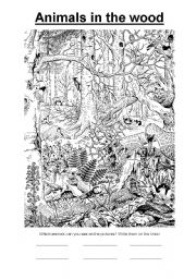 English Worksheets: Animals in the wood