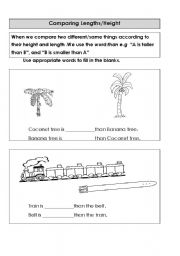 English Worksheets: comapring different things by height and length