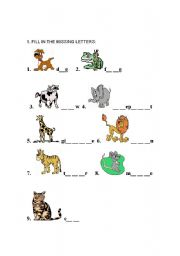 English Worksheets: Animals Worksheet