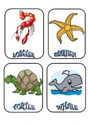 English Worksheets: AQUATIC CREATURES -1