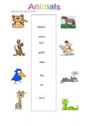 English Worksheets: Animals worksheet for elementary students