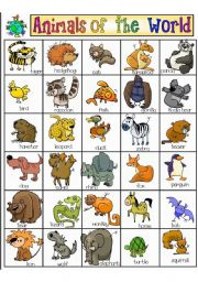 English Worksheet: Animals of the world Pictionary