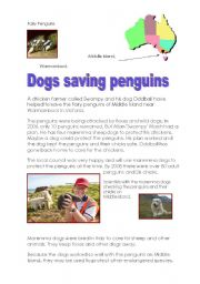 English Worksheet: Dogs saving penguins- Pre-Intermediate