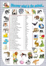 Animal Kingdom Matching Animals To The Clues And Pics Level Elementary Age 12