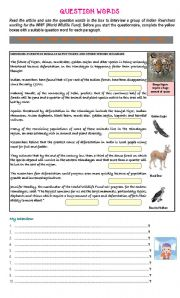 English Worksheets: READING COMPREHENSION & GRAMMAR EXERCISE