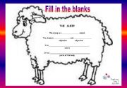 English Worksheets: Guided writing N� 01 - The sheep